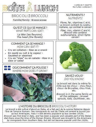 Brocoli / Broccoli
