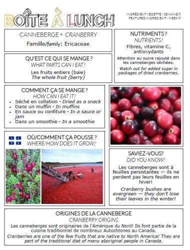 Canneberge / Cranberry